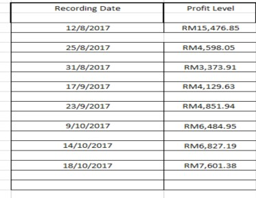 Profit Record
